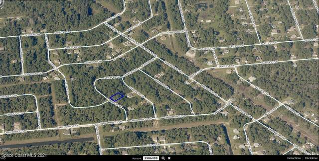 1085 Savery Road SW, Palm Bay, FL 32908 (MLS #902641) :: Armel Real Estate