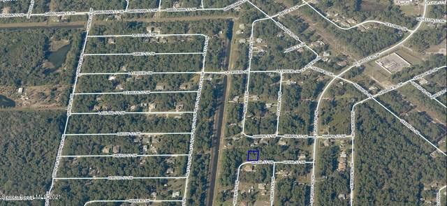 381 Galena Street SW, Palm Bay, FL 32908 (MLS #902647) :: Armel Real Estate