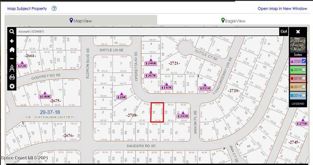 691 SE Londonderry Circle SE, Palm Bay, FL 32909 (MLS #902688) :: Premium Properties Real Estate Services
