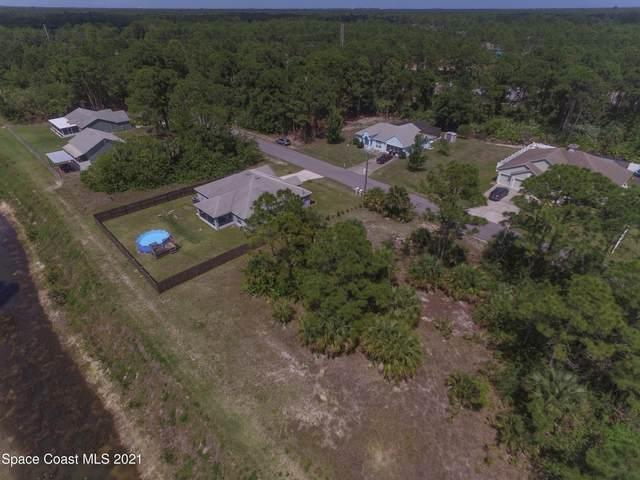 1266 Amelia Avenue SW, Palm Bay, FL 32908 (MLS #902918) :: Armel Real Estate