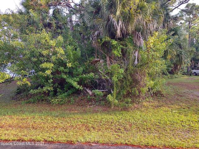 747 Geddes Street SW, Palm Bay, FL 32908 (MLS #902936) :: Armel Real Estate