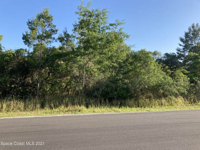1640 Waldrep Street SE, Palm Bay, FL 32909 (MLS #903023) :: Armel Real Estate