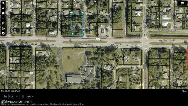 295 Malabar Road, Palm Bay, FL 32909 (MLS #903144) :: Premier Home Experts