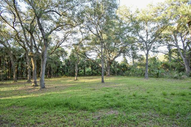 850 Lake Harney Woods Boulevard, Mims, FL 32754 (MLS #903209) :: Premium Properties Real Estate Services