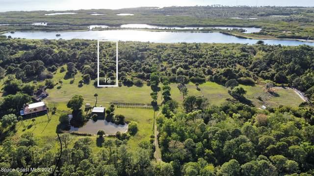 12 Clydesdale Drive, Merritt Island, FL 32953 (MLS #903344) :: Blue Marlin Real Estate