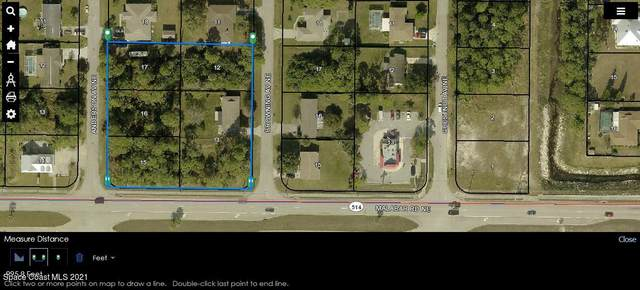 285 Malabar Road, Palm Bay, FL 32907 (MLS #903351) :: Premier Home Experts