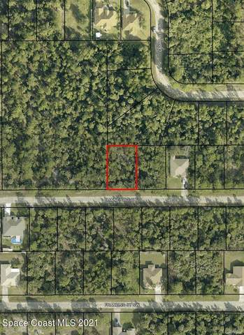 251 Haines Road SW, Palm Bay, FL 32908 (MLS #903518) :: Armel Real Estate