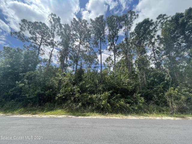 1186 Westunder Street SE, Palm Bay, FL 32909 (MLS #903539) :: Armel Real Estate