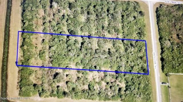 8410 Antelope Avenue, Palm Bay, FL 32909 (MLS #903853) :: Armel Real Estate