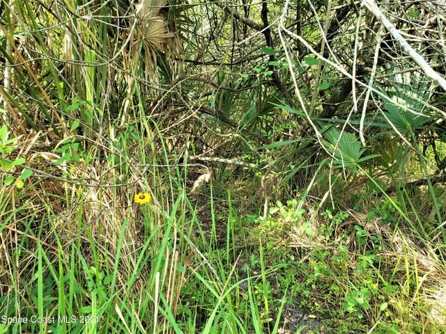 0 Unknown- Corner Of Elk/Fox Trl, Palm Bay, FL 32909 (MLS #903891) :: Armel Real Estate