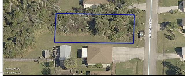 550 Whitehall Avenue SW, Palm Bay, FL 32908 (MLS #903955) :: Armel Real Estate