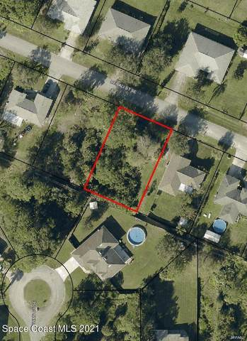 1440 Denali Street SE, Palm Bay, FL 32909 (MLS #904074) :: Armel Real Estate