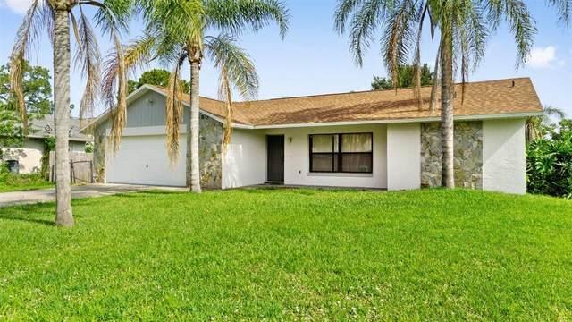 5680 Datura Street, Cocoa, FL 32927 (MLS #904079) :: Blue Marlin Real Estate