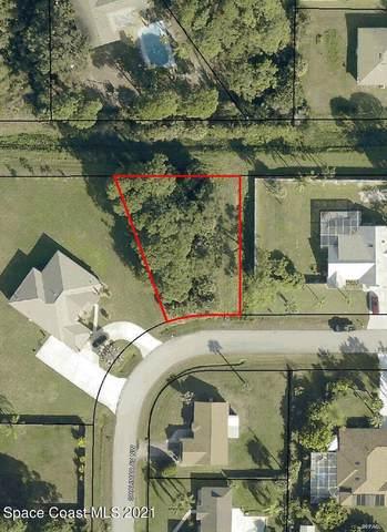 274 Shalimar Avenue NW, Palm Bay, FL 32907 (MLS #904123) :: Armel Real Estate