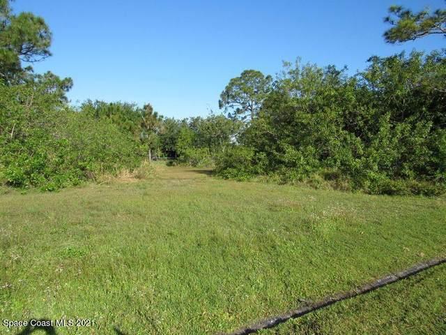 590 Fondulac Street, Palm Bay, FL 32908 (MLS #904146) :: Armel Real Estate