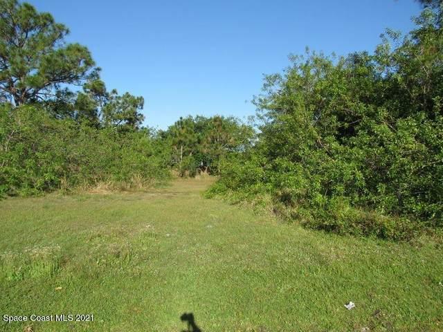 540 Fintonrod Street, Palm Bay, FL 32908 (MLS #904153) :: Armel Real Estate