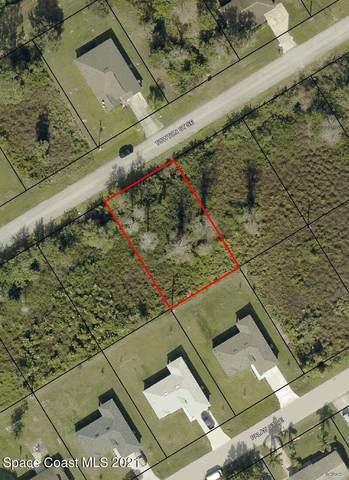 1450 Towton Street SE, Palm Bay, FL 32909 (MLS #904162) :: Armel Real Estate