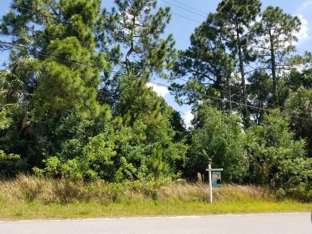 433 Harrington Street SW, Palm Bay, FL 32908 (MLS #904233) :: Armel Real Estate
