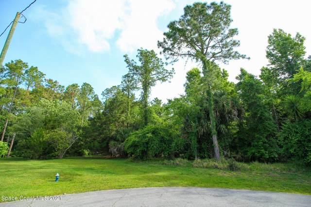 26 Kaffir Lily Place, Palm Coast, FL 32137 (MLS #904253) :: Armel Real Estate