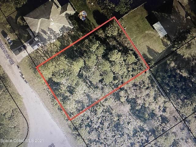 2662 Kingman Avenue SE, Palm Bay, FL 32909 (MLS #904267) :: Armel Real Estate