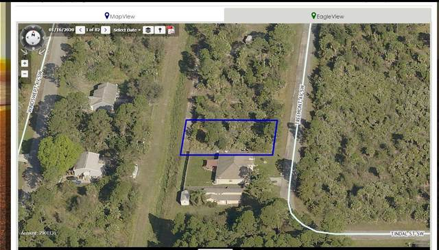 580 Treemont Avenue SW, Palm Bay, FL 32908 (MLS #904277) :: Armel Real Estate