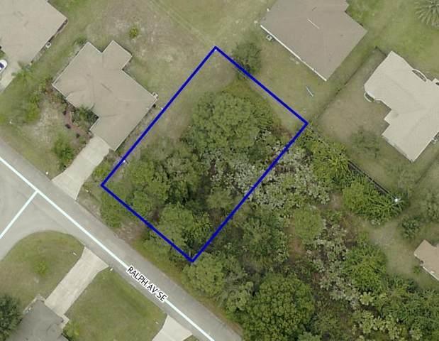2451 Ralph Avenue SE, Palm Bay, FL 32909 (MLS #904279) :: New Home Partners