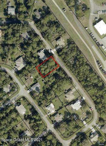 1066 Wing Road SW, Palm Bay, FL 32908 (MLS #904354) :: Armel Real Estate