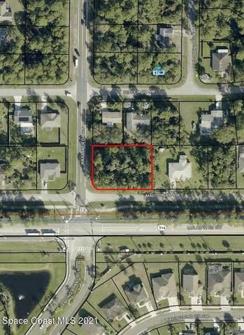 1495 Madison(Corner Of Krassner) Road NW, Palm Bay, FL 32907 (MLS #904355) :: Blue Marlin Real Estate