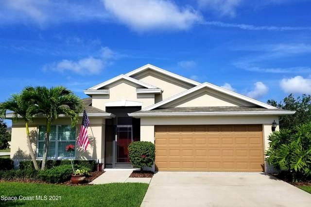 3320 Finola Avenue SE, Palm Bay, FL 32909 (MLS #904494) :: New Home Partners