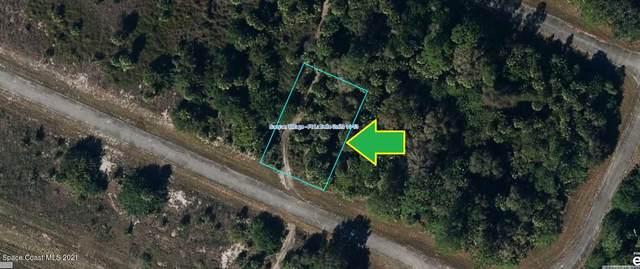 466 Almeria Drive, LaBelle, FL 33935 (MLS #904554) :: New Home Partners