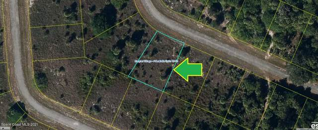 404 Wessex Lane, LaBelle, FL 33935 (MLS #904555) :: New Home Partners