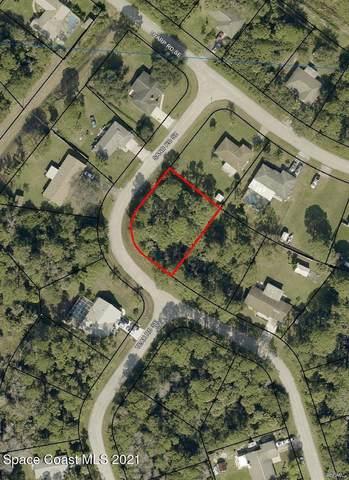 1705 Sand Road SE, Palm Bay, FL 32909 (MLS #904645) :: New Home Partners