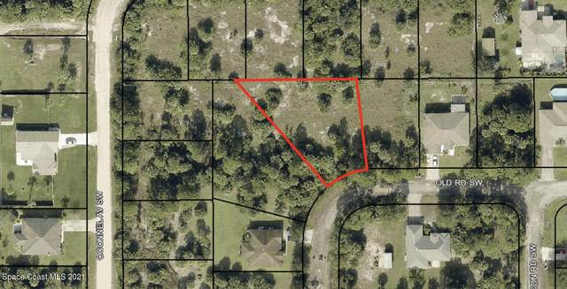 499 Old Rd Road, Palm Bay, FL 32908 (MLS #904670) :: Keller Williams Realty Brevard