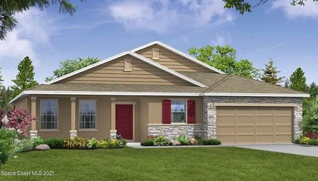 407 Hamy Street SW, Palm Bay, FL 32908 (MLS #904808) :: New Home Partners