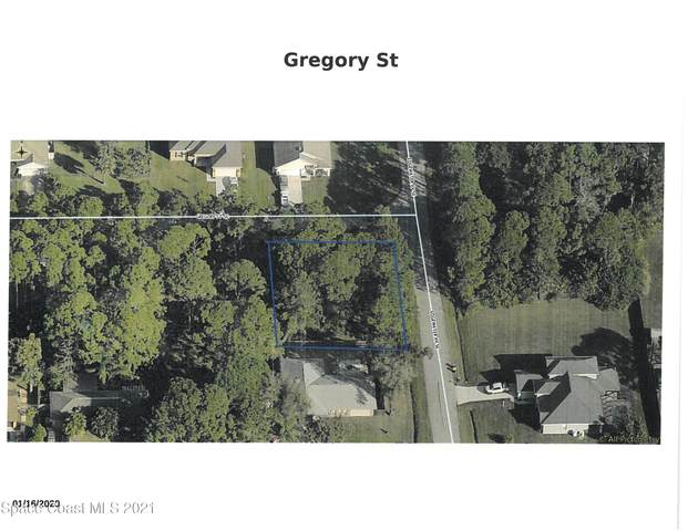 0000 SE Gregory Street, Palm Bay, FL 32909 (MLS #905066) :: Blue Marlin Real Estate