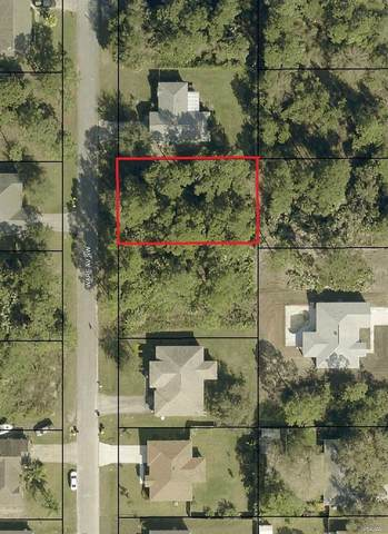 0 Ware Avenue SW, Palm Bay, FL 32908 (MLS #905077) :: Armel Real Estate
