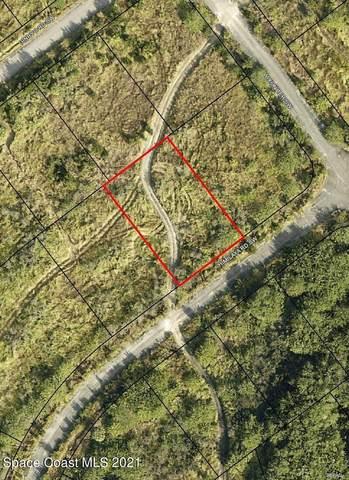 230 Delake Road NW, Palm Bay, FL 32907 (MLS #905257) :: Blue Marlin Real Estate
