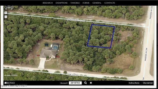 814 Nightengale Street, Palm Bay, FL 32908 (MLS #905323) :: Dalton Wade Real Estate Group