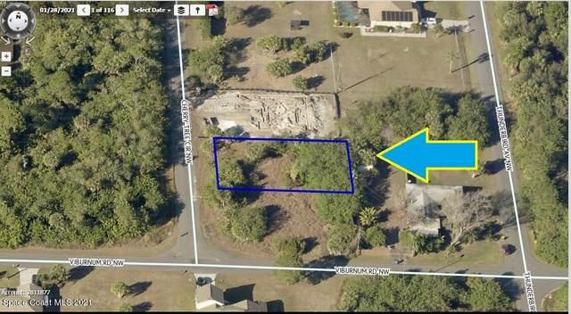 303 Cherry Tree Circle NW, Palm Bay, FL 32907 (MLS #905346) :: Dalton Wade Real Estate Group