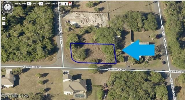 301 Corner Lot On Cherry Tree Circle NW, Palm Bay, FL 32907 (MLS #905348) :: Dalton Wade Real Estate Group