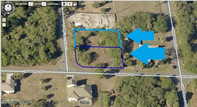 301 & 303 2 Lots On Cherry Tree Circle NW, Palm Bay, FL 32907 (MLS #905350) :: Dalton Wade Real Estate Group