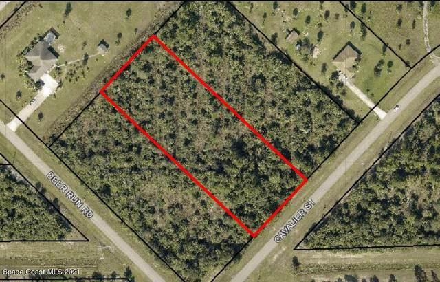242 Cavalier Street, Palm Bay, FL 32909 (MLS #905375) :: Dalton Wade Real Estate Group