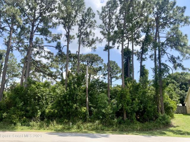 728 Firestone Street NE, Palm Bay, FL 32907 (MLS #905396) :: Premium Properties Real Estate Services