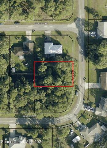 412 Higgs Avenue NW, Palm Bay, FL 32907 (MLS #905481) :: Blue Marlin Real Estate