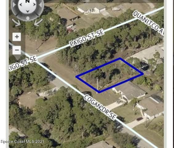 1121 Cogan Drive SE, Palm Bay, FL 32909 (MLS #905650) :: Armel Real Estate