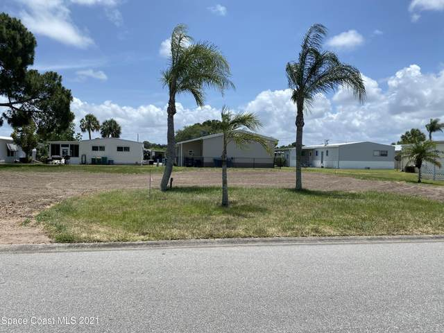 919 Cashew Circle, Sebastian, FL 32976 (MLS #905768) :: Armel Real Estate