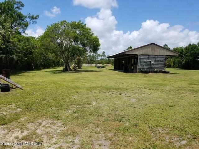 3400 Leg Horn Road, Grant Valkaria, FL 32950 (MLS #905798) :: Keller Williams Realty Brevard