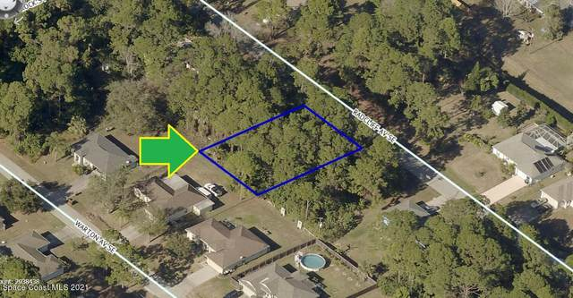 1830 Radcliff Avenue SE, Palm Bay, FL 32909 (MLS #905824) :: Vacasa Real Estate