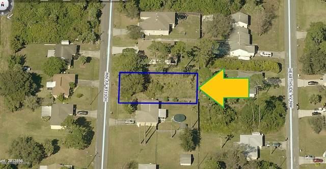 159 Hoffer Avenue NW, Palm Bay, FL 32907 (MLS #905920) :: Blue Marlin Real Estate
