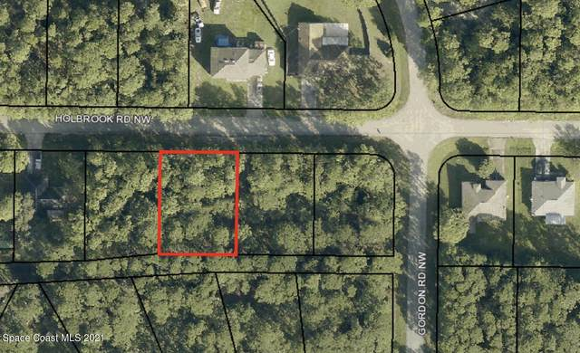 1626 Holbrook Road NW, Palm Bay, FL 32907 (MLS #906120) :: Armel Real Estate